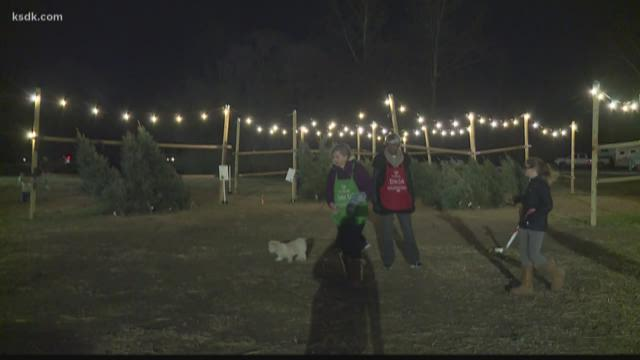 Thousands Enjoy Christmas Tree Lane Walk Night