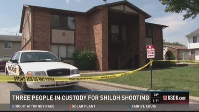Three in custody for Shiloh, Illinois shooting