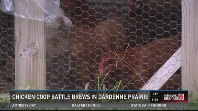Chicken coop battle brews in Dardenne Prairie