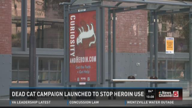 Dead cat campaign launched to stop heroin use