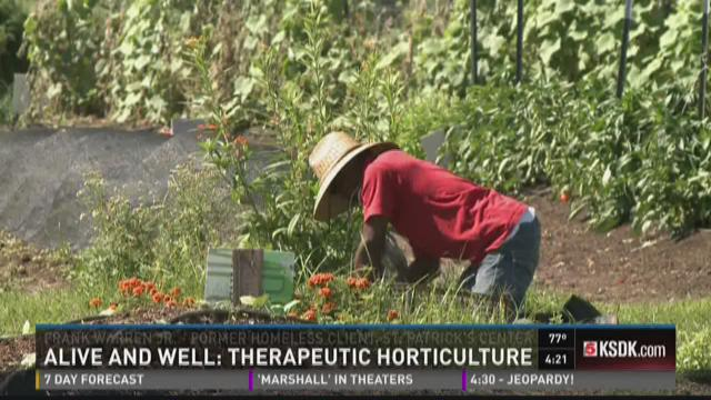 """Alive and Well"" Therapeutic horticulture"