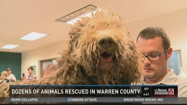 Dozens of animals rescued in Warren County