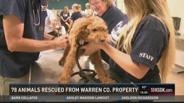 78 animals rescued from Warren County property