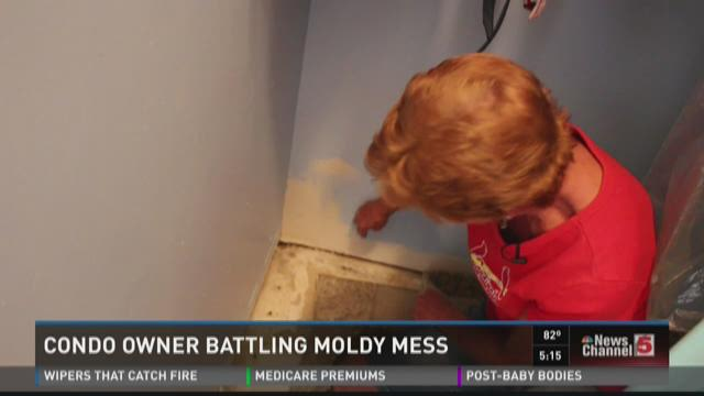 Condo owner battling moldy mess