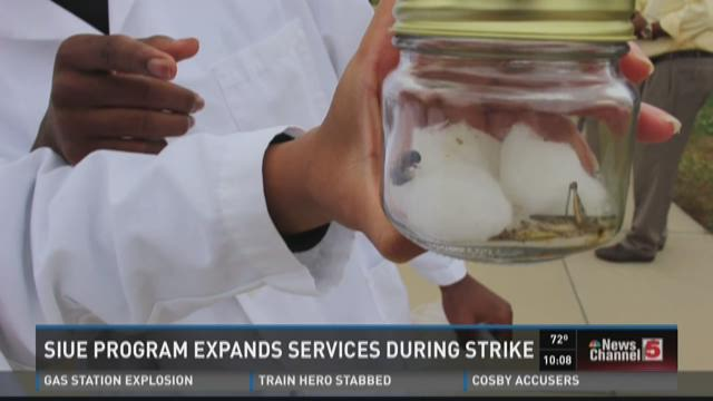 SIUE program expands services during strike